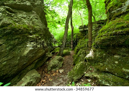 A peaceful woodland trail through rock outcroppings.