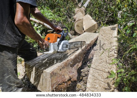 A person , man using a chainsaw cut log , illegal loggers