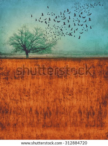 a photo composite of a tree in a field with birds flying out of it with a grunge overlay and toned with a retro vintage instagram filter app or action effect with copy space - stock photo