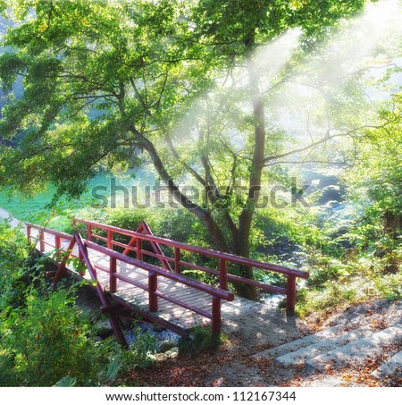 A photo of a beautiful park - stock photo