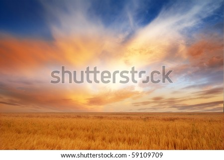 A photo of a beautiful sunset in the countryside - stock photo