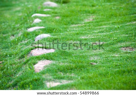 A photo of stones under green meadow.