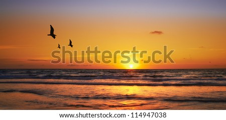 A photo of sunset at the ocean - stock photo