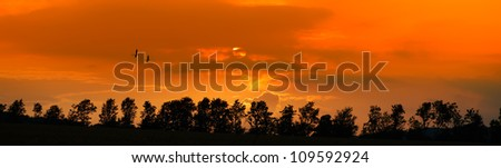 A photo of sunset with a trees silhouette - stock photo