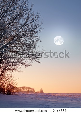 A photo of the moon and winter landscape