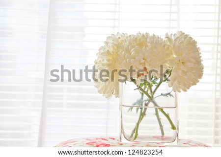 a photo of white chrysanthemum flower in glass vase on table with colorful paint fabric front of window at morning - stock photo