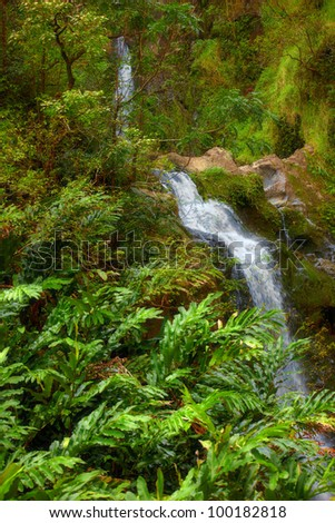 A photo waterfall in rain forest - Maui - stock photo