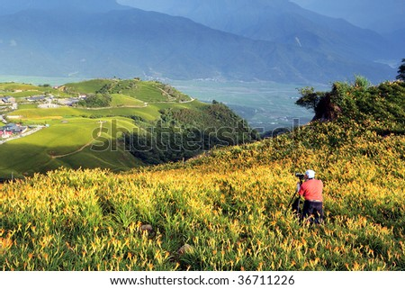 a photographer in Lily field on a hill