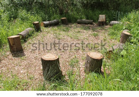 A Picnic Site of Wooden Tree Trunk Seats in a Circle.