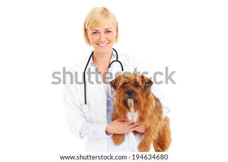 A picture of a happy vet holding a terrier over white background - stock photo