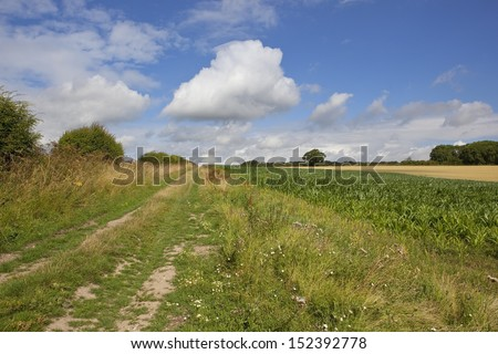 a picturesque bridleway in the yorkshire wolds england with crops trees and hedgerows under a blue cloudy sky in summer - stock photo