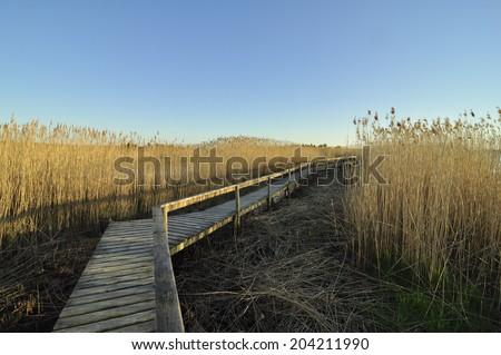 A picturesque wooden bridge near the sea shore  - stock photo