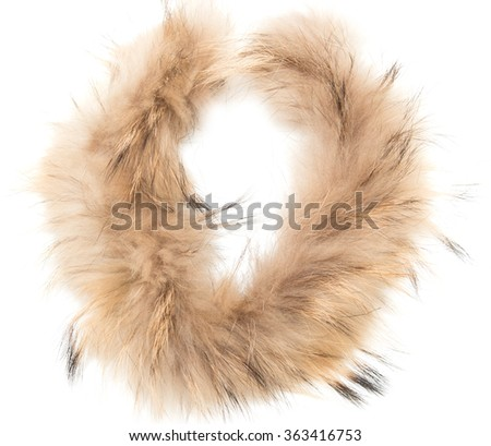 a piece of brown fur on a white background