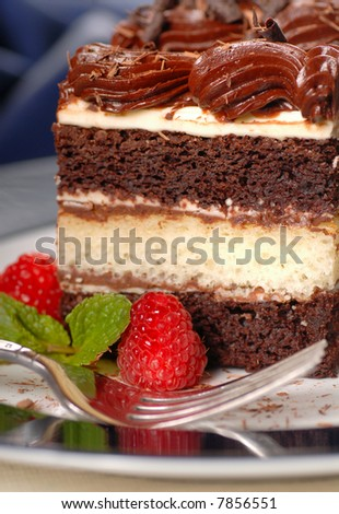 A piece of chocolate layer cake with raspberries, mint and fudge frosting - stock photo