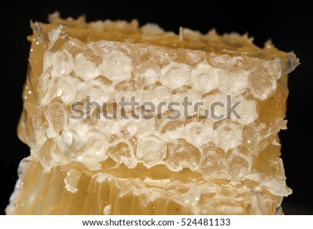A piece of fresh cut honeycomb on a black background. Natural product full of vitamins and micro elements for healthy eating and lifestyle. Close up horizontal composition.