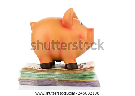 a piggy bank standing on banknotes, symbolic photo of thriftiness, profitability, return on - stock photo