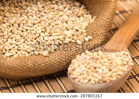 A pile of barley on white