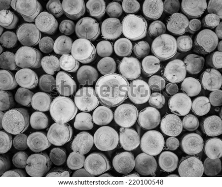 a pile of cut wood stump log texture in black and white tone - stock photo