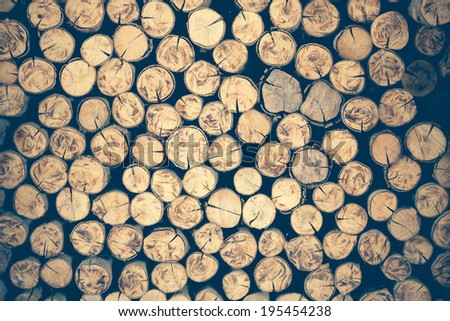 a pile of cut wood stump log texture Used as background - stock photo