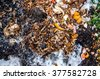 a pile of food waste, such as eggshells and fruit and vegetable peels on the ground with snow. Composting pile of rotting kitchen fruits and vegetable scraps as a banana peel orange and onion garbage - stock photo