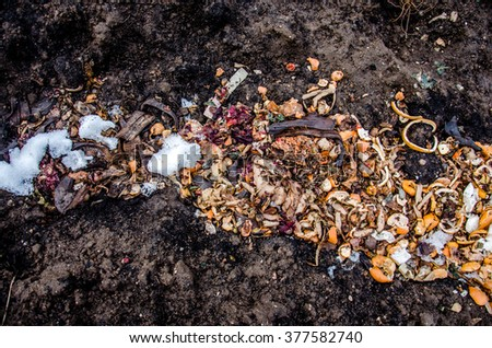 a pile of food waste, such as eggshells and fruit and vegetable peels on the ground with snow. Composting pile of rotting kitchen fruits and vegetable scraps as a banana peel orange and onion garbage