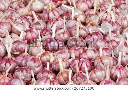 A pile of garlic on market stand - stock photo
