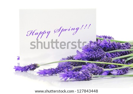 a pile of lavender flowers and the sentence happy spring written in a paper label - stock photo