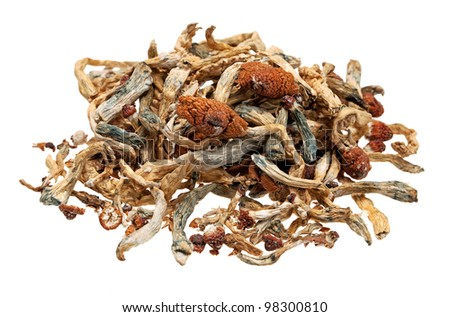 A pile of magic mushrooms isolated on white - stock photo