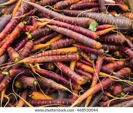 A pile of multi-colored heirloom carrots.
