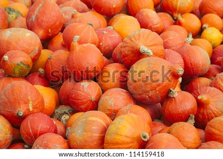 A pile of pumpkins that are piled up near a street so people can take them and leave money in a cash box. - stock photo