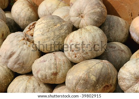 A pile of pumpkins waiting to be sold