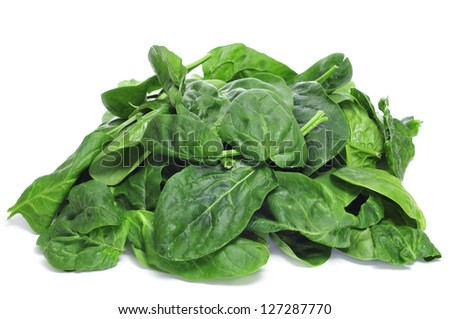 a pile of spinach on a white background - stock photo