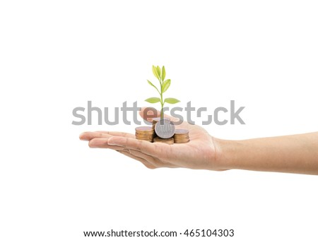 A pile of stack coin and growing sapling tree on hand with finance concept isolated on white background.