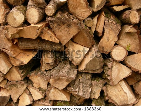 A pile of wood stacked for the winter