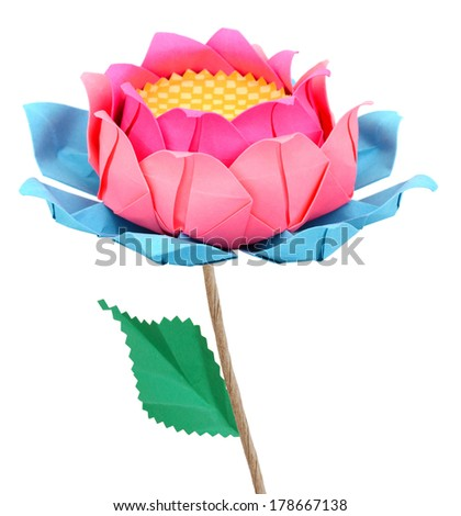 A pink lotus paper - stock photo