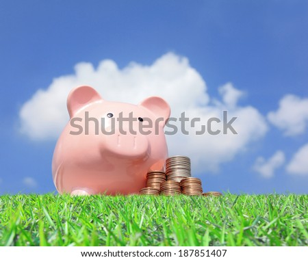 A pink piggy bank and money with sky background
