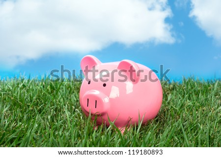 A pink piggybank in a meadow of green grass and a blue, puffy white cloud sky.