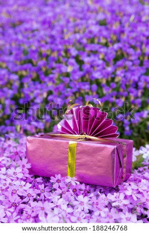 a pink present atop a sea of violet flowers - stock photo