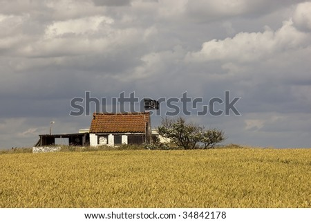 a pirates hideaway with wheat field under a dramatic sky