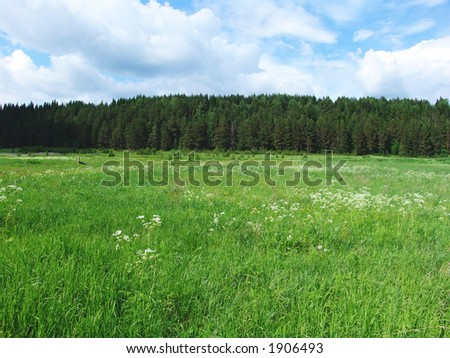 A plain field with forest at on the horizon