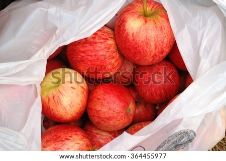 A plastic bag full of apples