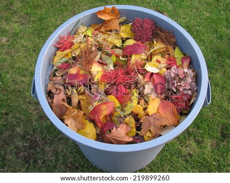 A plastic garbage bin full of yellow and red leaves  - stock photo