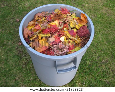 A plastic trash container full of yellow and red leaves  - stock photo