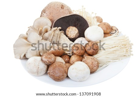 A plate of mixed mushrooms on a white background - stock photo