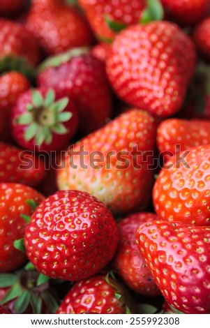 A pocket strawberry close-up, virtual background - stock photo