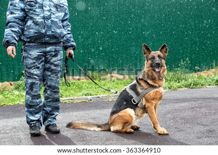 A police officer with a service dog