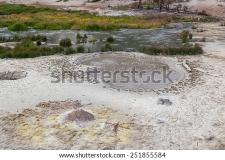 A pool of hot muddy water with gas bubbles on the surface next to a hot water stream surrounded by wild grass at Yellowstone National Park.