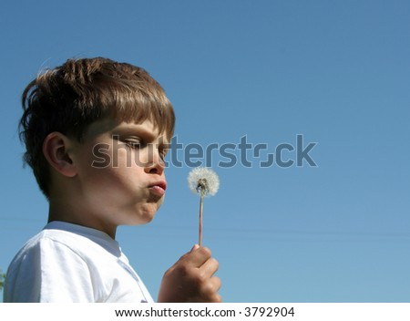 A portrait of a child blowing dandelion seeds - stock photo