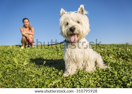 A portrait of beautiful girl keeping pretty white West Highland dog outdoor - stock photo