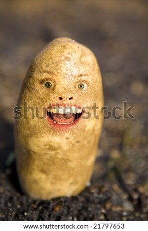 A potato head and face - stock photo